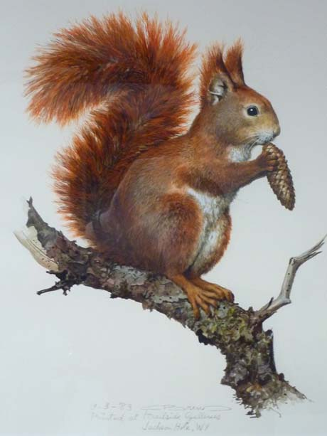 Carl Brenders Art--Red Squirrel Carl Brenders Original Painting: www.jwatsonfineart.com/brenders/originals/redsquirrel_original.html